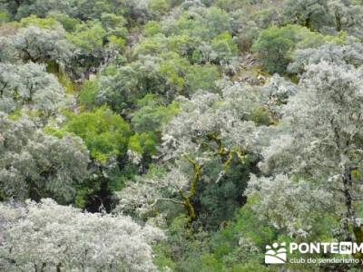 Las Hurdes: Agua y Paisaje;senderismo vizcaya;senderos cantabria
